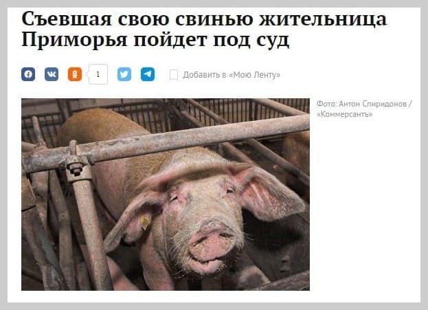 свинья имущество